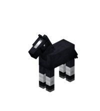 Baby Black Horse with White Stockings.png