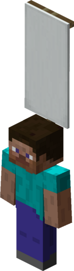Steve wearing White Banner.png