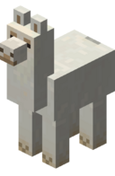 White Llama JE1 BE1.png