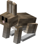 Salt & Pepper Rabbit JE1 BE1.png