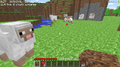 0.27 SURVIVAL TEST Sheep.png