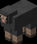 Gray Sheep BE3.png