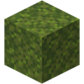 Moss Block JE1 BE1.png