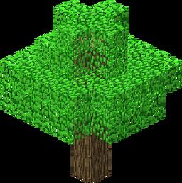 Oak JE3.png