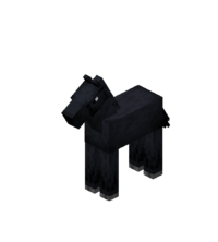 Baby Black Horse.png