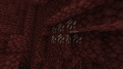 Quarts In the Nether.png