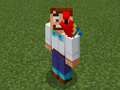 Red Parrot on Party Steve.png