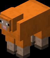 Orange Sheep BE5.png