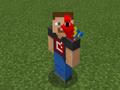 Red Parrot on Developer Steve.png