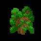 Oak Sapling JE2.png