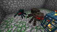 Araña de cuevas tamaño