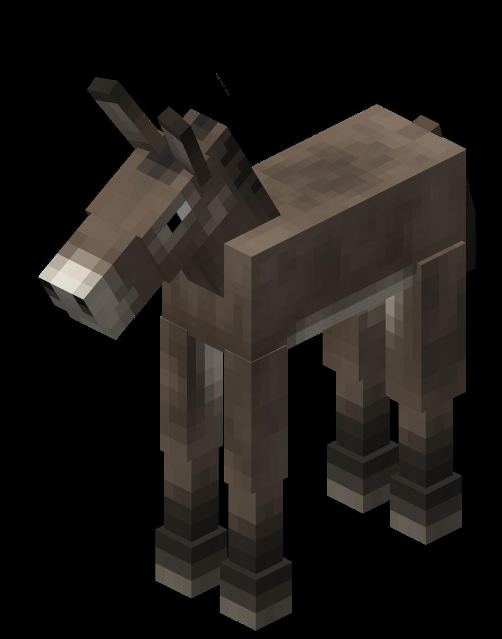 Cría de burro.png
