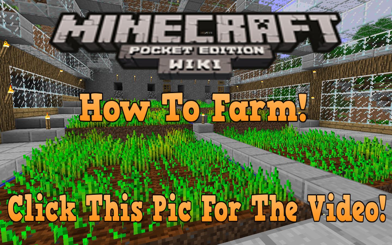 Farming  Minecraft Bedrock Wiki  Fandom