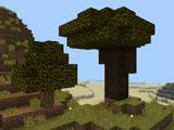 Dark Oak Trees