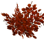 Redwoodleaves.png