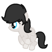 Milagros Filly.png