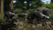 299740 screenshots wolfs