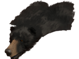 Bear Pelt Rug