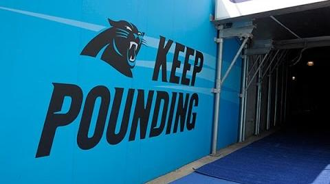 Carolina Panthers Rising Again 2015