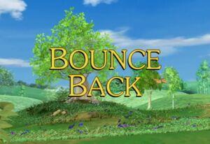 Sunny Patch Bounce Back.jpg