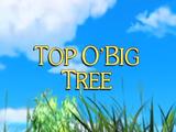 Top O'Big Tree