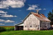 Iowa County Barns
