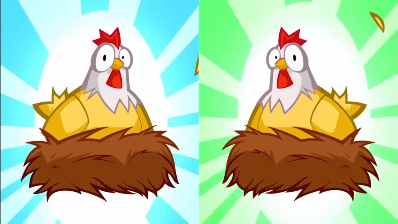 Chickens/Gallery