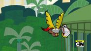 Paladum flies off