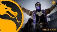 Mortal Kombat 11 Ultimate Meet Rain