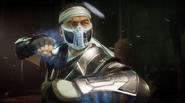 Mortal Kombat 11 Sub-Zero Skin