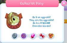 Guitarist Pony Album Description.png