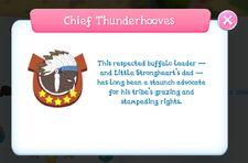Chief Thunderhooves info.jpg