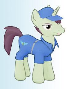 Contractor pony1.jpg