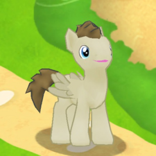 Crescent Pony Character.png