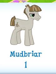 Mudbriar inventory.jpg