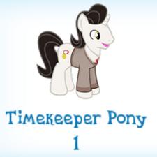 Timekeeper Pony Inventory.png