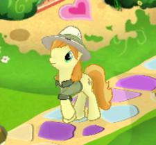 Safari pony.png