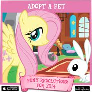 Pony Resolutions 2014 Fluttershy