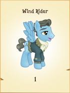 Wind Rider Inventory