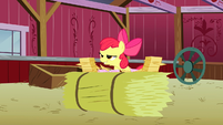 """Apple Bloom about to say """"Manehattan!"""" S3E08"""