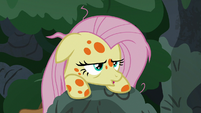 Fluttershy reaches the top of the tree branches S7E20