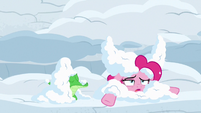 Pinkie and Gummy covered in more snow S7E11
