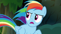 """Rainbow Dash """"quit and retire out of the blue!"""" S7E18"""