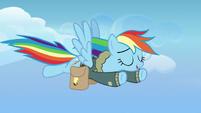 Rainbow Dash flying leisurely toward Ponyville S6E24