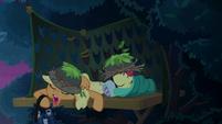 Applejack and Apple Bloom sleeping S9E10