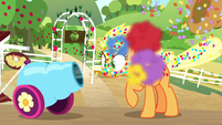 Applejack gets blasted with confetti S8E18