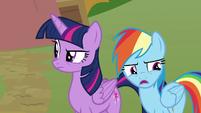 "Rainbow Dash ""so I could apologize"" S8E20"