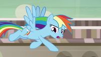 """Rainbow Dash """"that was just one angry pony"""" S7E18"""
