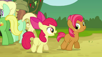 Apple Bloom 'I can't wait to hear all about it!' S3E08