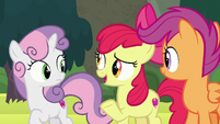 Apple Bloom -fair if we visited both places- S8E6
